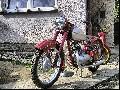 Jawa 250 Perák 11