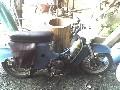 motorky - 50as250 (nevi)